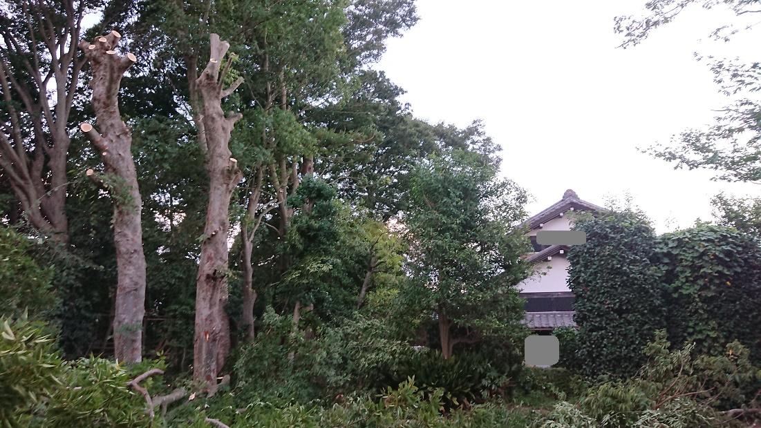 f:id:kinoboriyoshi:20200830231346j:plain