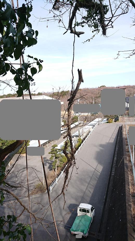 f:id:kinoboriyoshi:20210227233448j:plain