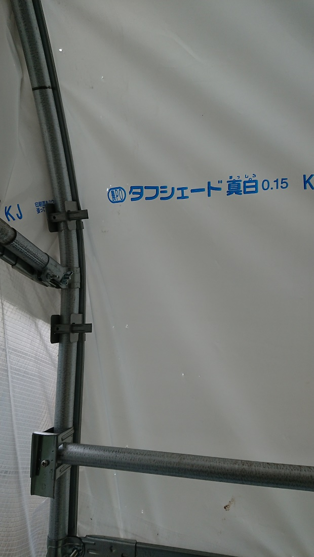 f:id:kinoboriyoshi:20210408233916j:plain