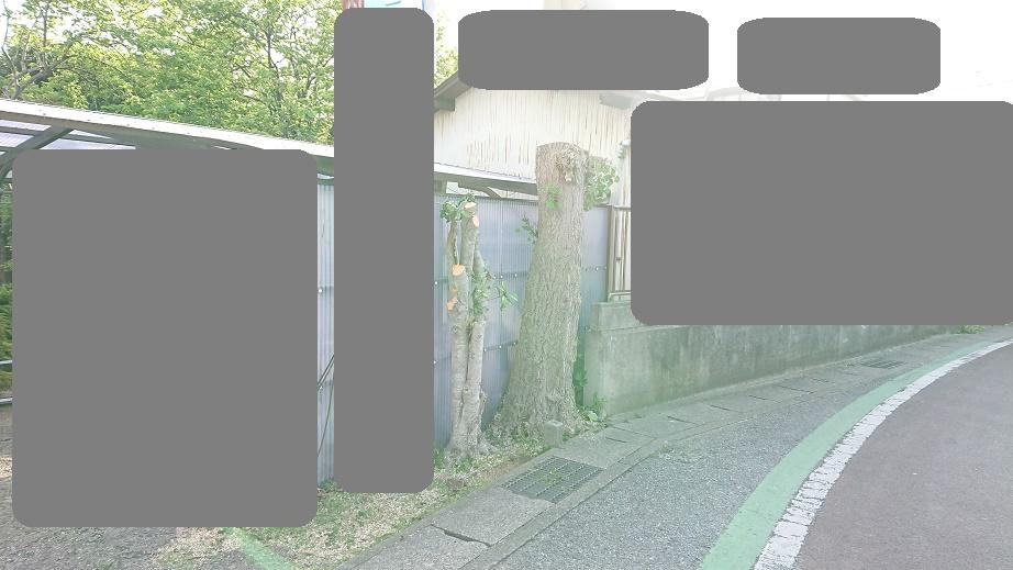 f:id:kinoboriyoshi:20210424225701j:plain