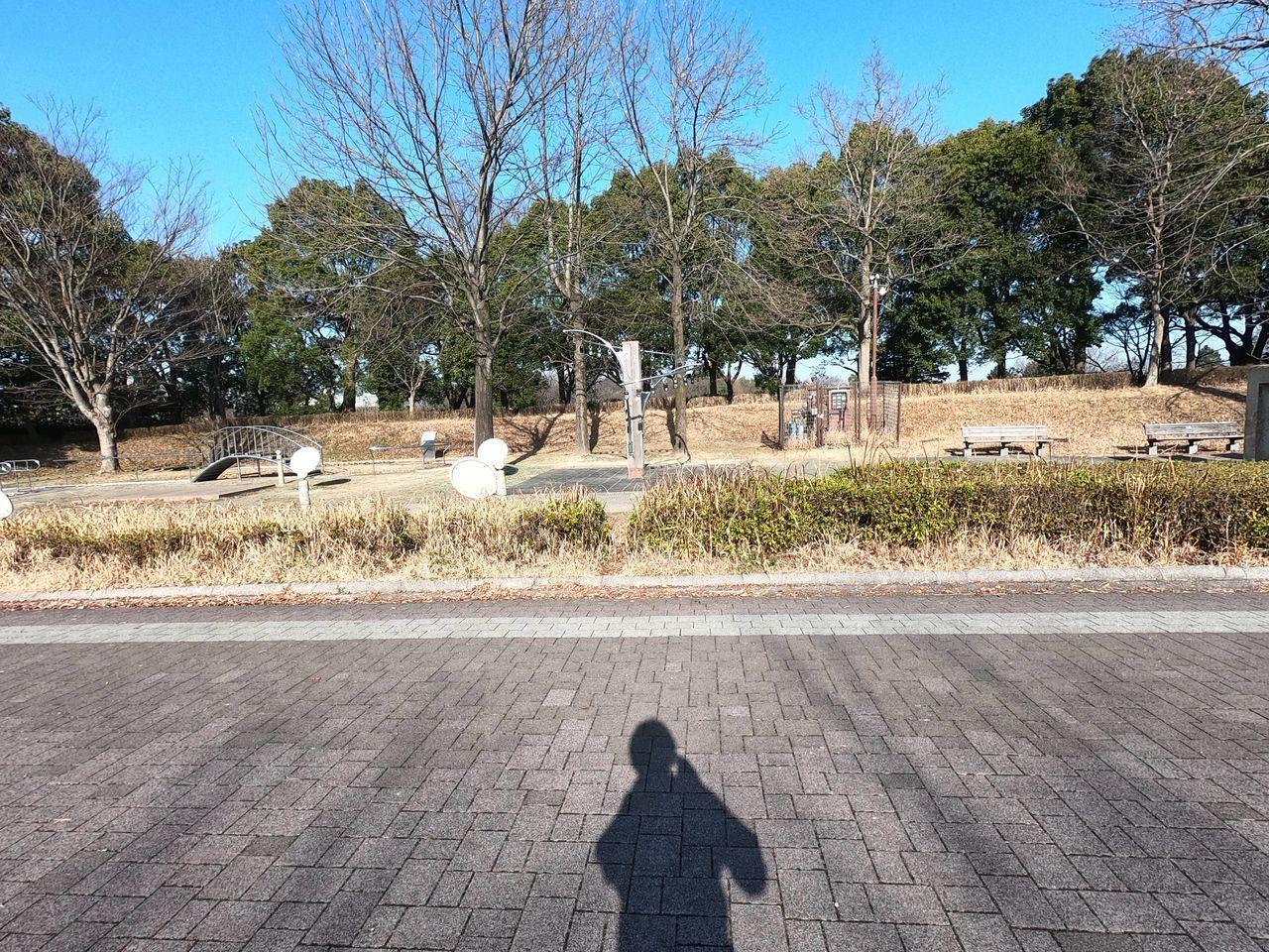 kenkounomori_img8_1