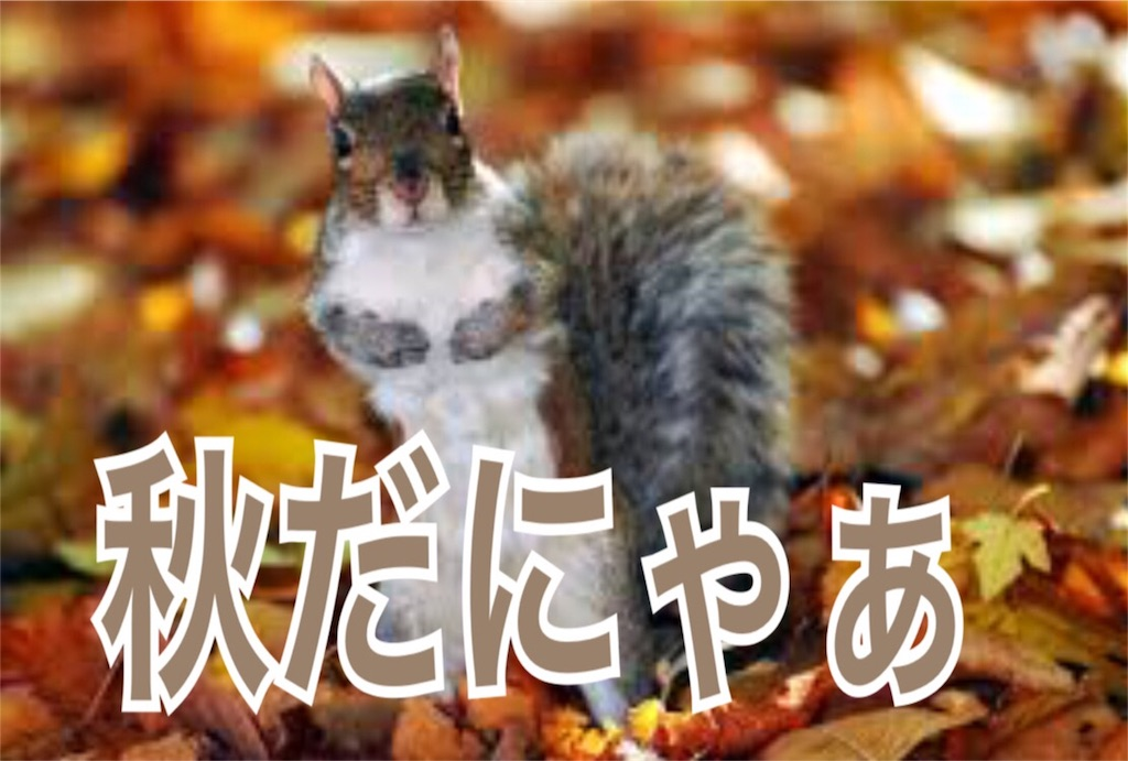 f:id:kinokomimi:20161007195834j:image