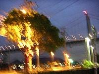 f:id:kinokoya:20050829150154j:image