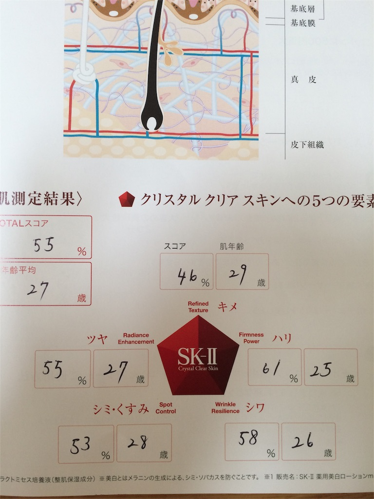 f:id:kinomi-kinomama:20160905182528j:image