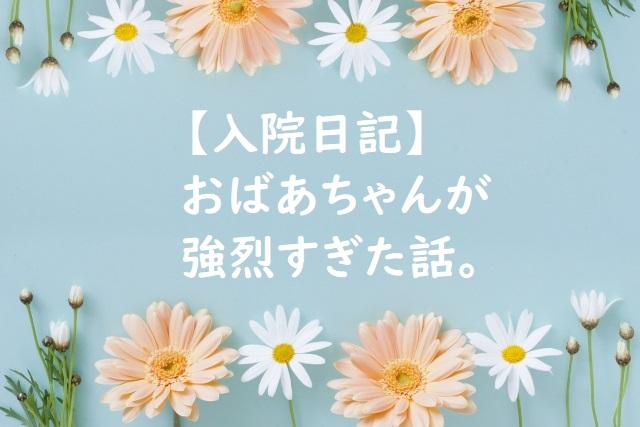 f:id:kinoshitakonoki:20180517165824j:plain