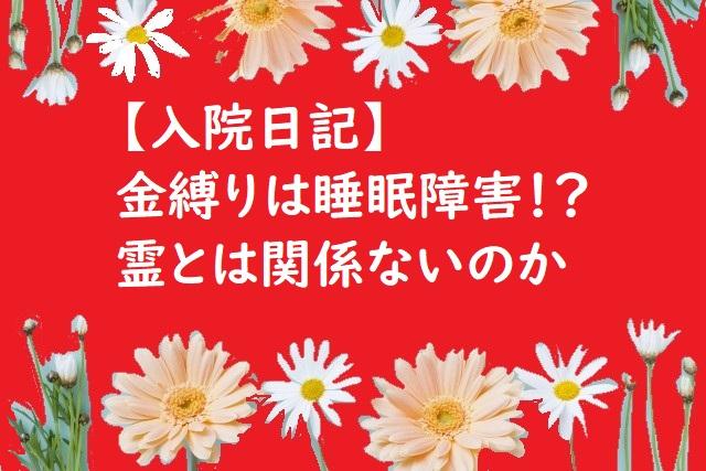 f:id:kinoshitakonoki:20180526143254j:plain