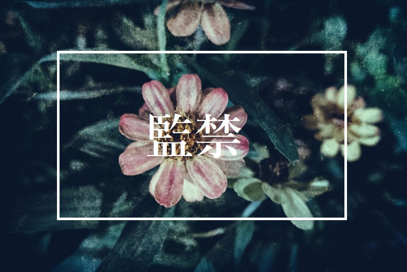 f:id:kinoshitakonoki:20180901154500j:plain