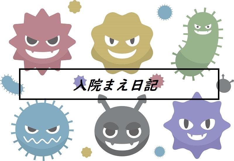 f:id:kinoshitakonoki:20200526132234j:plain