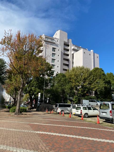 f:id:kinotoushi:20201130110057j:plain