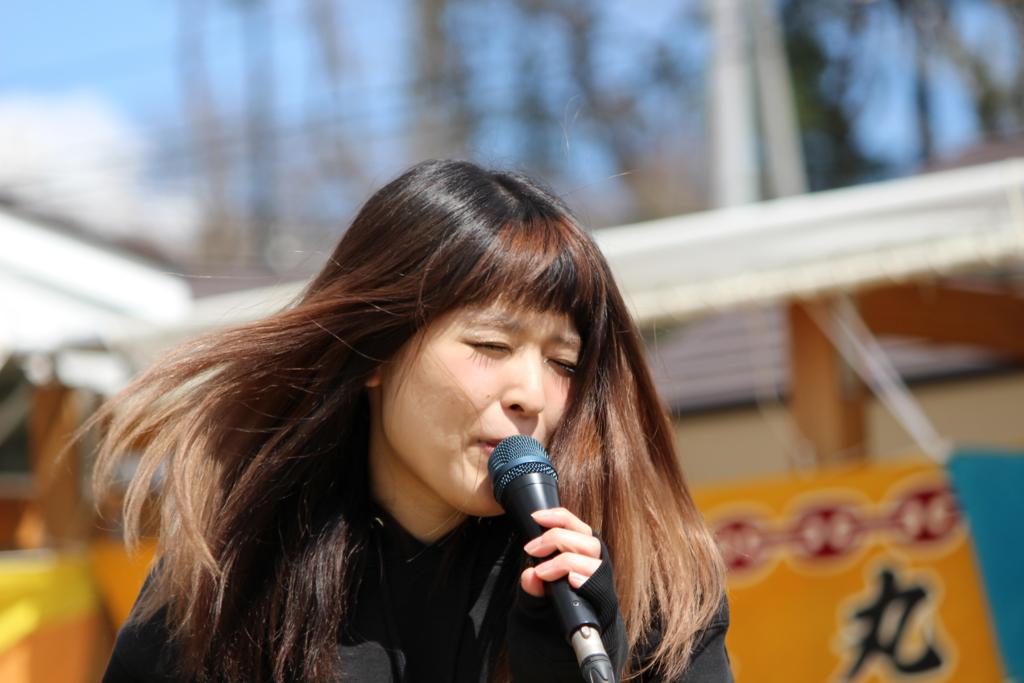 f:id:kintaro_japan:20161229174033j:plain