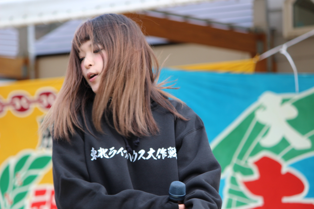 f:id:kintaro_japan:20161229175045j:plain