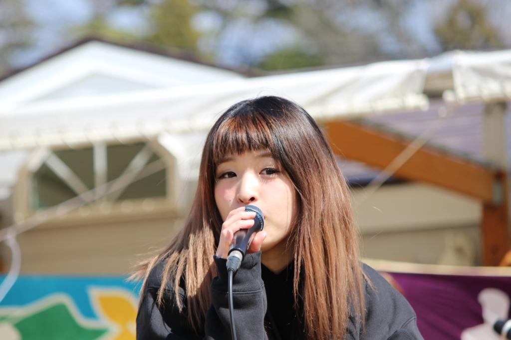 f:id:kintaro_japan:20161229175633j:plain