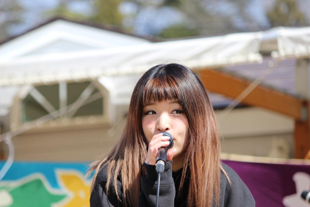 f:id:kintaro_japan:20161229175709j:plain