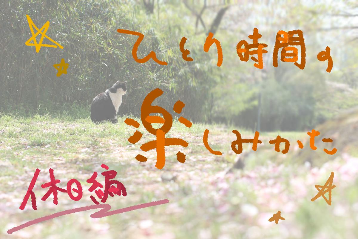 f:id:kinuyahiro:20190531185249j:plain