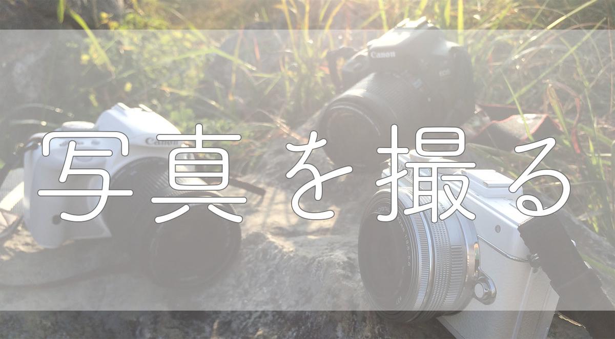f:id:kinuyahiro:20190531185328j:plain