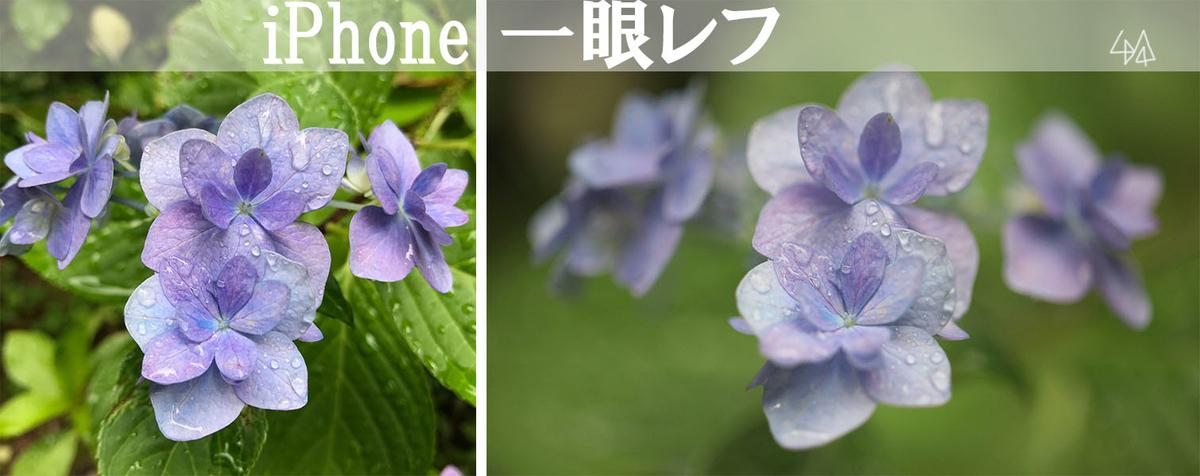 f:id:kinuyahiro:20190701105746j:plain