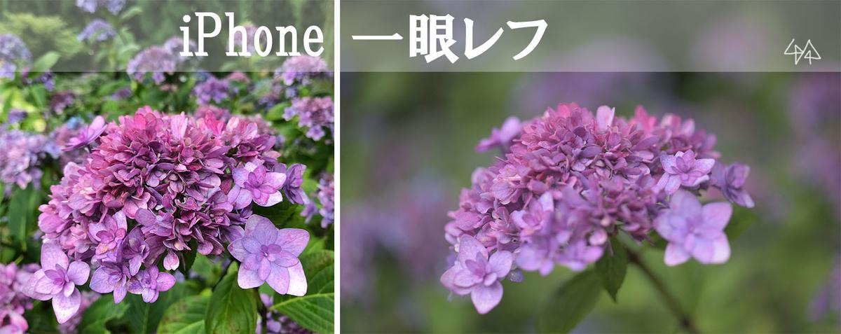 f:id:kinuyahiro:20190701105800j:plain
