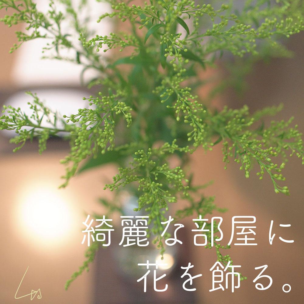 f:id:kinuyahiro:20190721171148j:plain