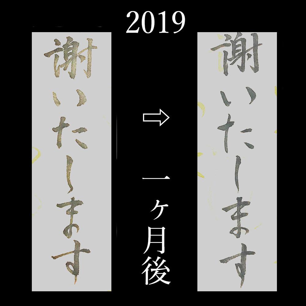f:id:kinuyahiro:20200531230041j:plain