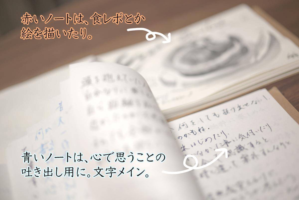 f:id:kinuyahiro:20200615235041j:plain