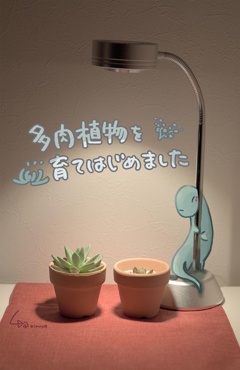 f:id:kinuyahiro:20201119205716j:plain