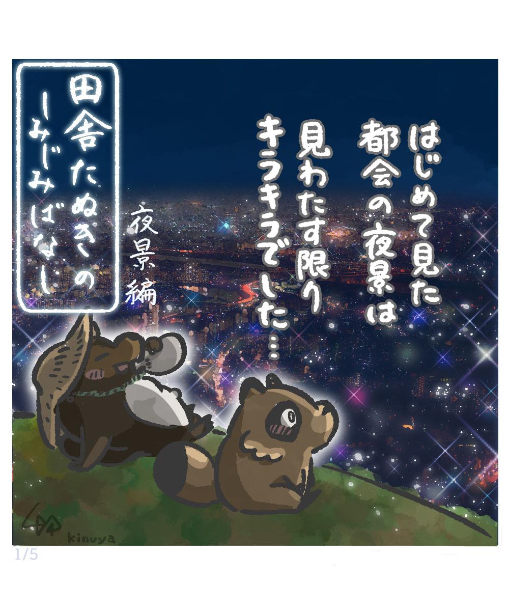 f:id:kinuyahiro:20201208225357j:plain