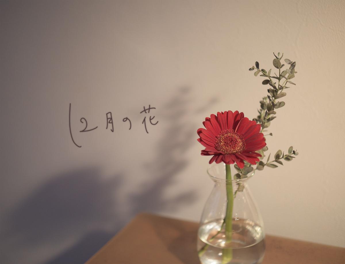 f:id:kinuyahiro:20201214212720j:plain