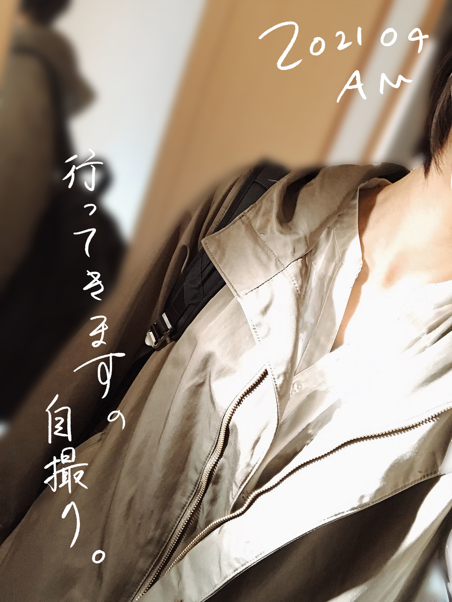 f:id:kinuyahiro:20210418194505j:plain