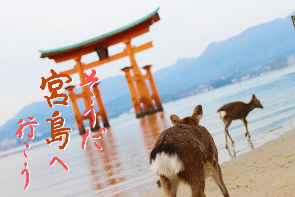 f:id:kinuyahiro:20210418200532j:plain