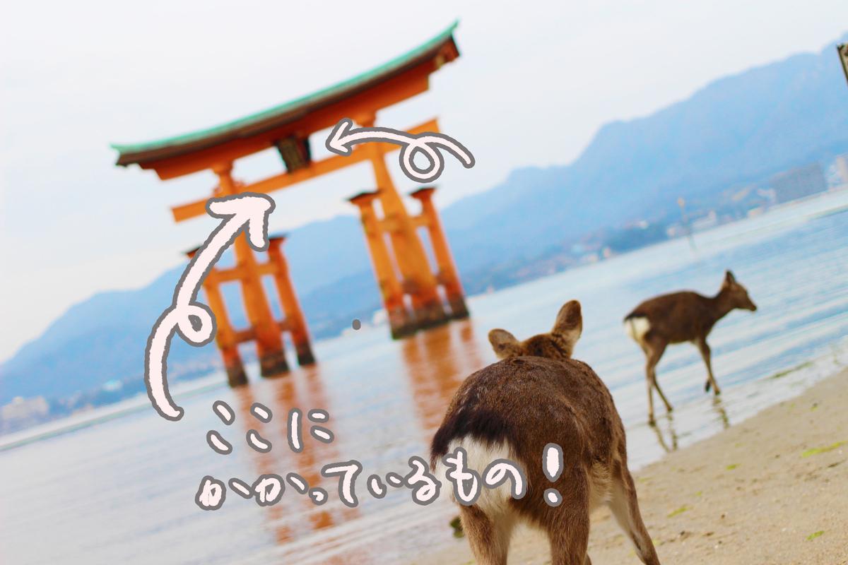 f:id:kinuyahiro:20210418212011j:plain