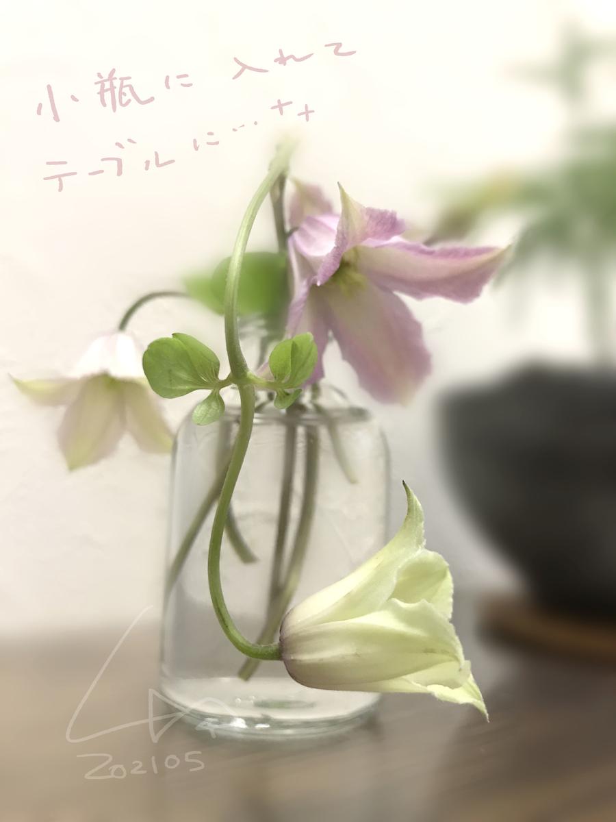 f:id:kinuyahiro:20210526164720j:plain