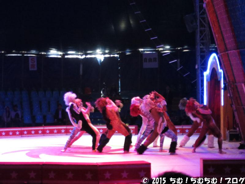 開会式典の猫ダンス