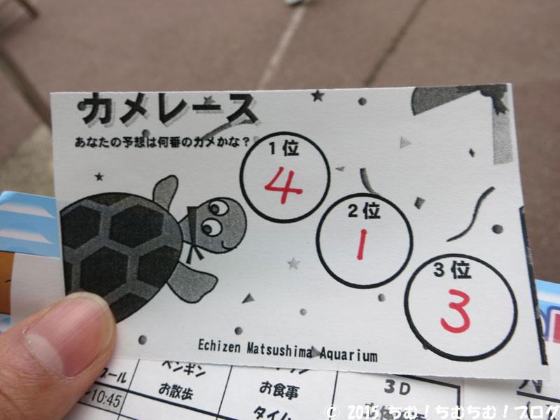 亀レースの投票券