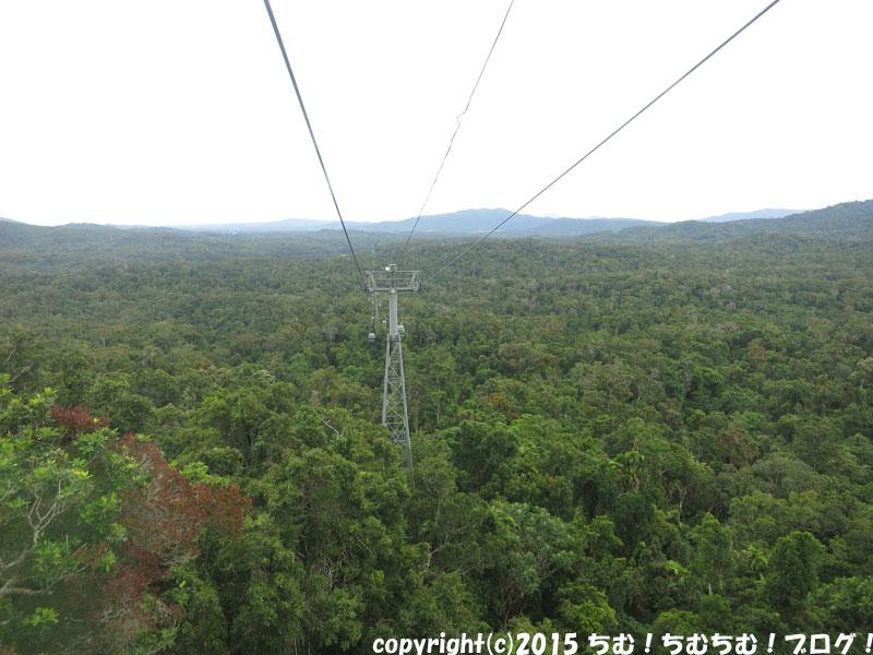 熱帯雨林の上