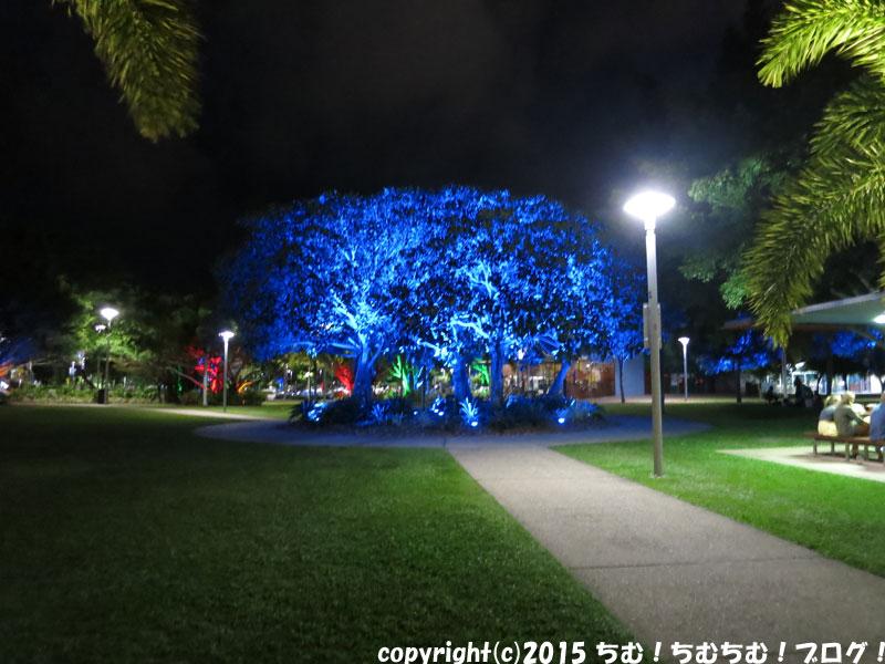 ライトアップされた公園