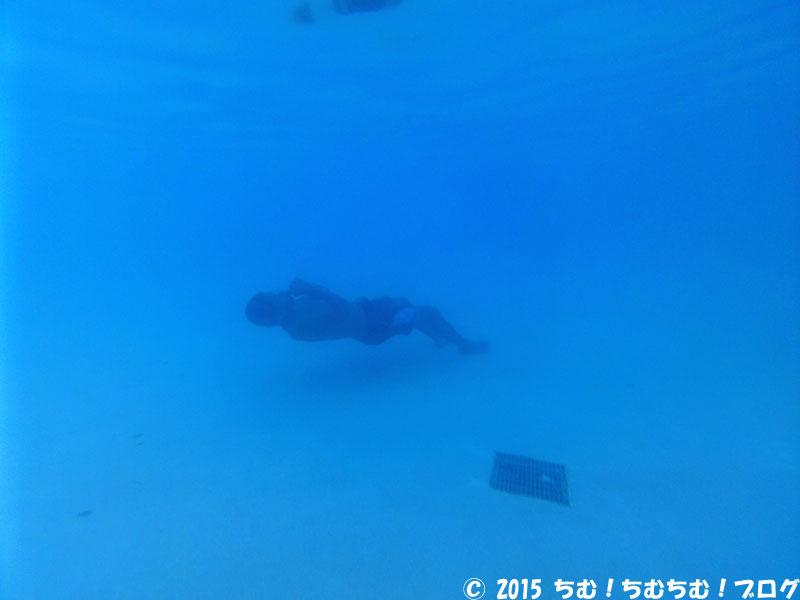 プールの底