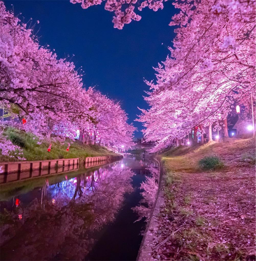 f:id:kira_kira_boshi:20190429112331j:image