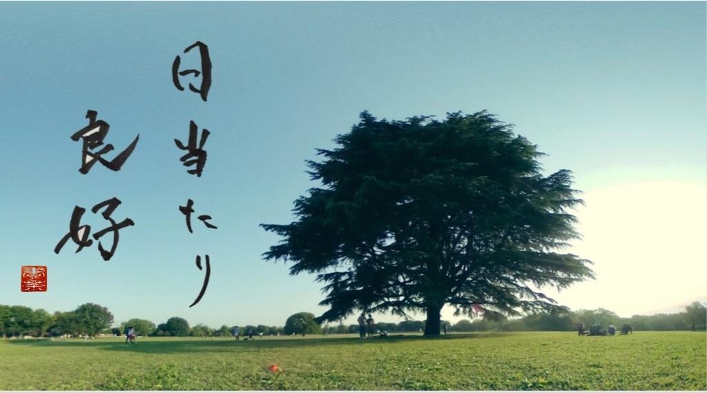 f:id:kira_kira_boshi:20200503221253j:image