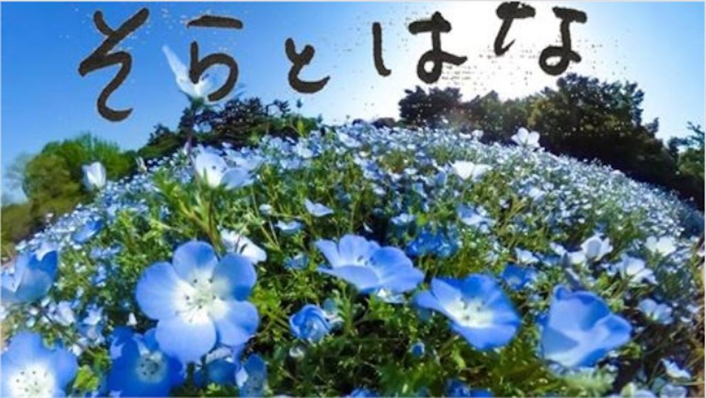 f:id:kira_kira_boshi:20200503221259p:image