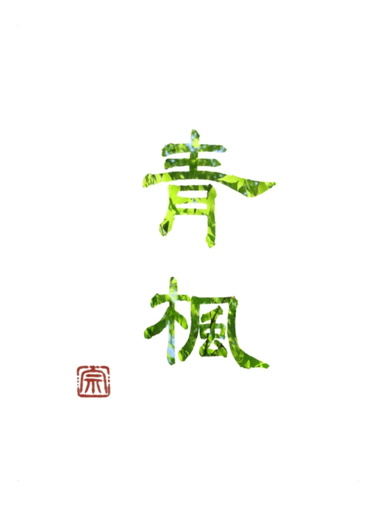 f:id:kira_kira_boshi:20200503221307j:image