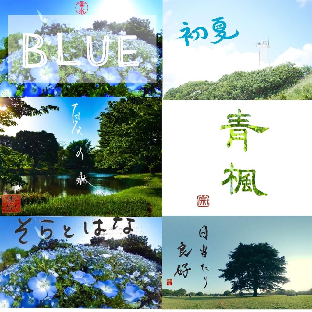 f:id:kira_kira_boshi:20200503225957j:image