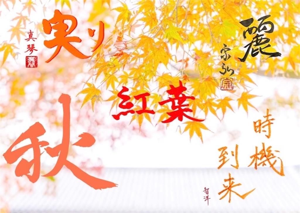 f:id:kira_kira_boshi:20201231003851j:image