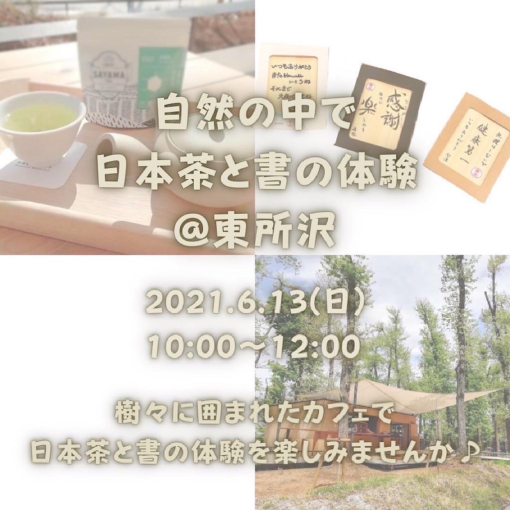 f:id:kira_kira_boshi:20210614223907j:image