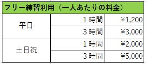 f:id:kirakira_rin:20190223105755j:plain