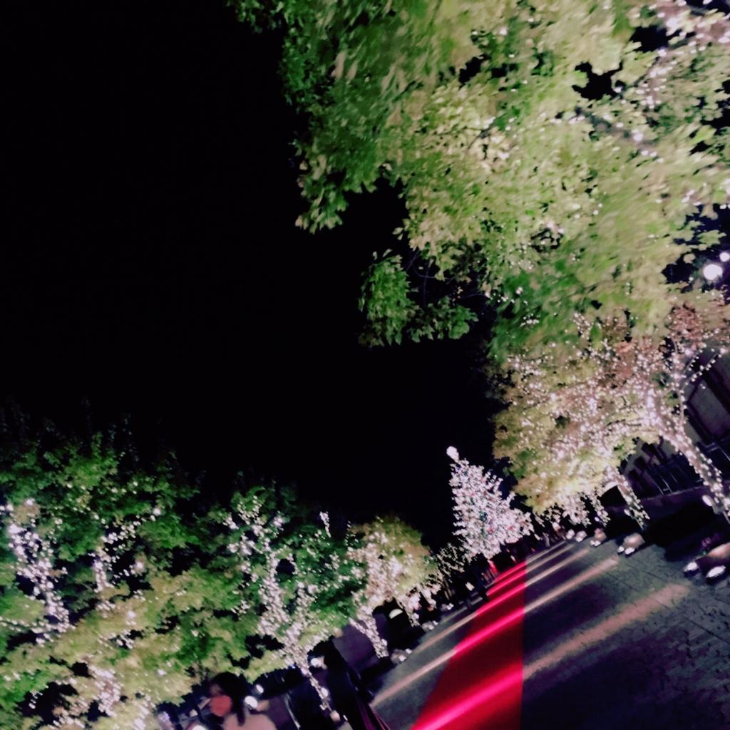 f:id:kirakira_t_r:20161119170223j:plain