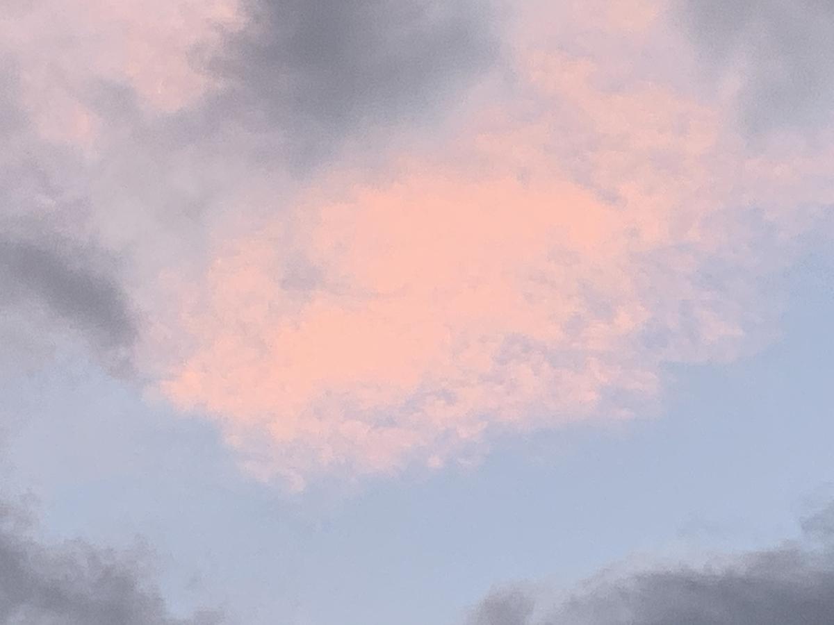 f:id:kirakirapark:20210101161002j:plain