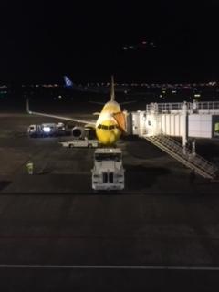 A320 スクート