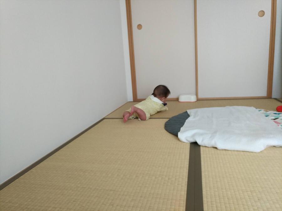 f:id:kirei-shisso:20190514131831j:plain