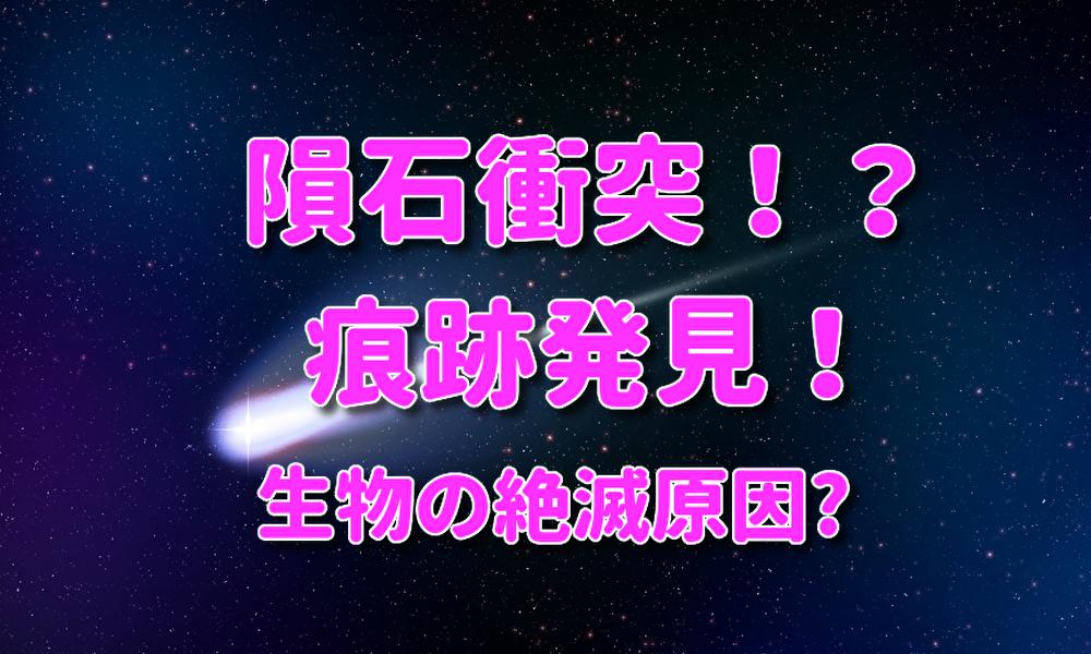 f:id:kireinakujira:20191121103328j:plain