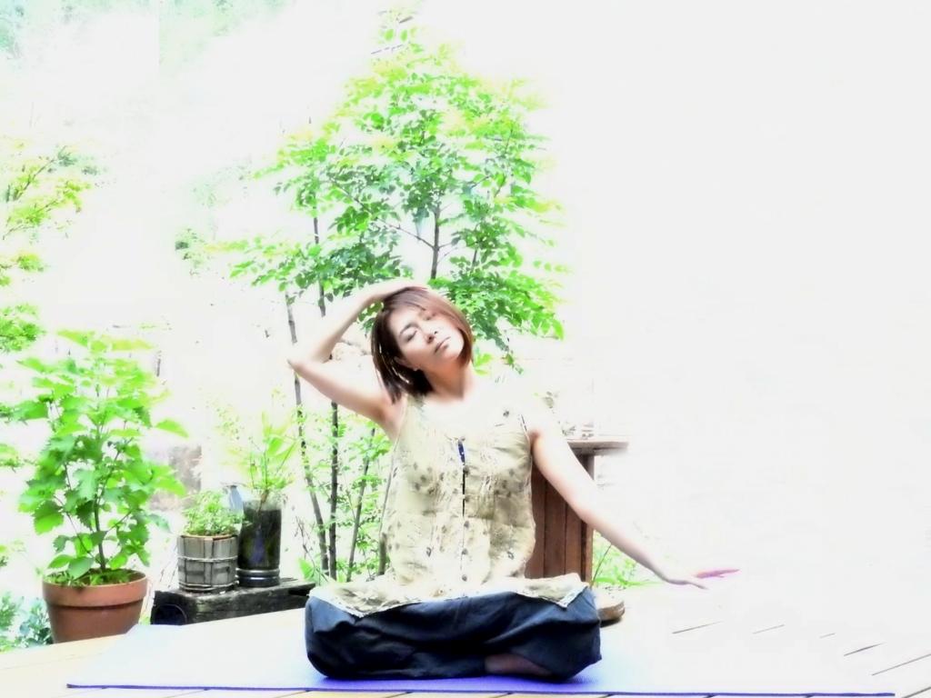 f:id:kireinakurashi:20170813083528j:plain